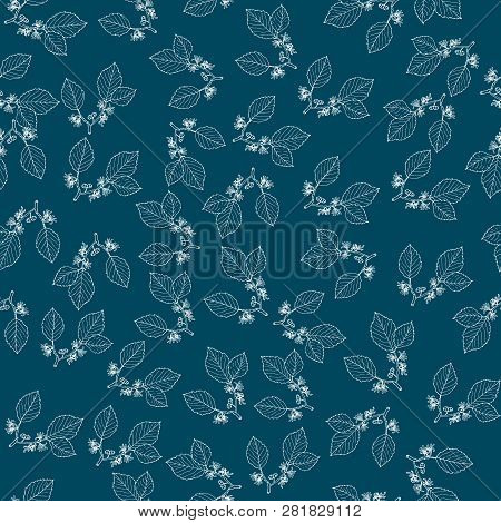 Seamless Pattern With Witch Hazel, Medicinal Plant. Hand Drawn Botanical Vector Illustration