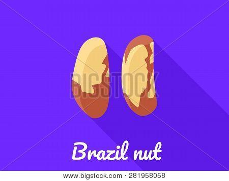 Brazil Nut Icon. Flat Illustration Of Brazil Nut Vector Icon For Web Design