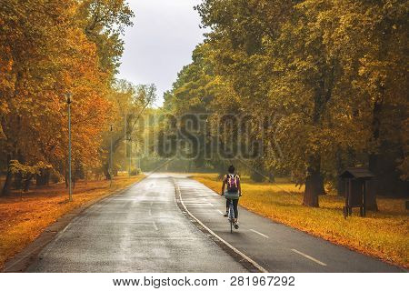Cycling In The Park. Lifestyle Concept. Hipster Woman Cycling In The Park In Autumn. Healthy Lifesty