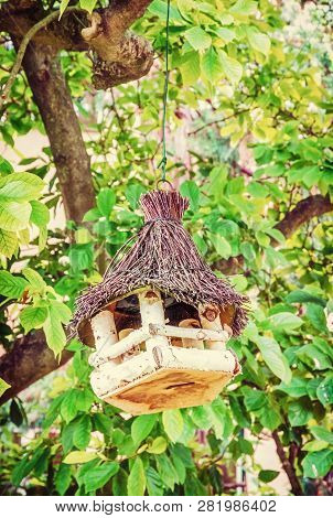 Wooden bird house hanging on the green tree. Ornithology theme. Seasonal natural scene. Beauty photo filter. poster