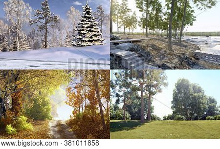 Spring, Summer, Fall, Winter. Collage Seasons. All Season. Seasons In One Illustration. 3d Illustrat
