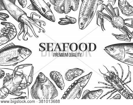 Sketch Seafood. Hand Drawn Fresh Fish, Lobster, Crab, Oyster, Mussel, Squid And Shrimps, Vintage Ske