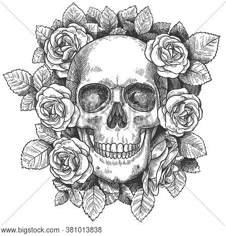 Skull With Flowers. Sketch Human Skull With Roses, Traditional Gothic Black Tattoo. Drawn Monster Ha