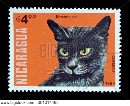 Nicaragua - Circa 1984 : Cancelled Postage Stamp Printed By Nicaragua, That Shows Burmese Blue Cat,