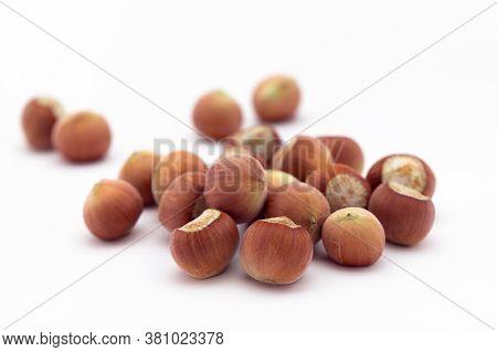 Hazelnut On White Background. Studio Shot Of Hazelnuts On White Background