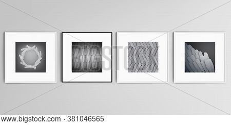 Realistic Vector Set Of Square Picture Frames Isolated On Gray Background. Feathers, Birds Plumage I