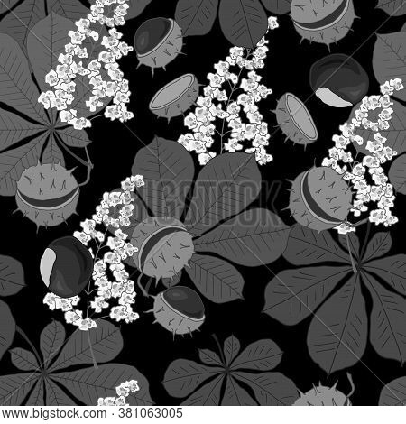 Seamless Pattern With Flowers Leaves And Fruits Of Chestnut In Monochrome Colors, Ornament For Fabri
