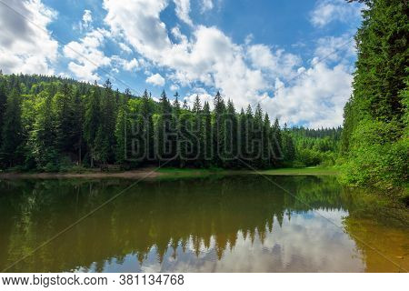 Scenery Around The Lake In Mountains. Spruce Forest On The Shore. Reflection In The Water. Sunny Wea