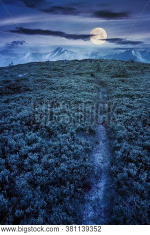 Path Uphill To The Mountains At Night. Tatra Ridge In The Distance In Full Moon Light. Composite Ima