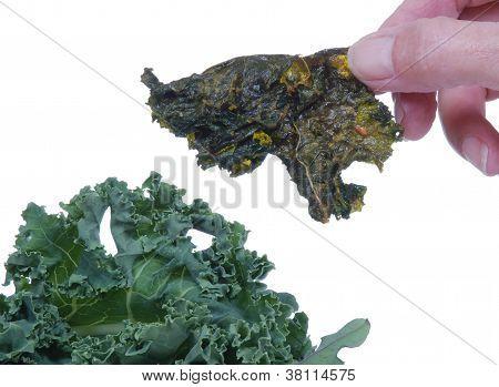 Kale Chip Near Fresh Kale