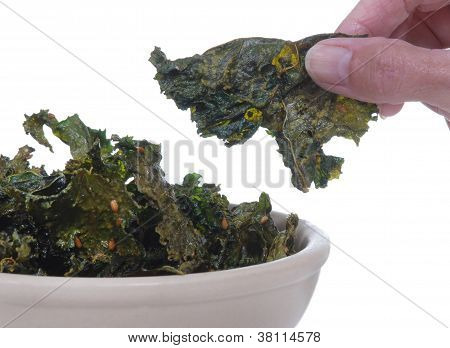 Kale chips in a bowl with a hand holding one. Isolated on white. poster