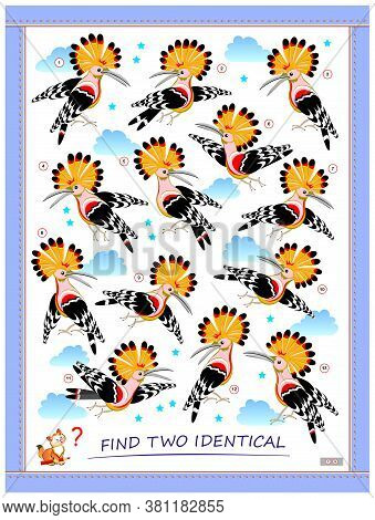 Logic Puzzle Game For Children And Adults. Find Two Identical Hoopoes. Printable Page For Kids Brain