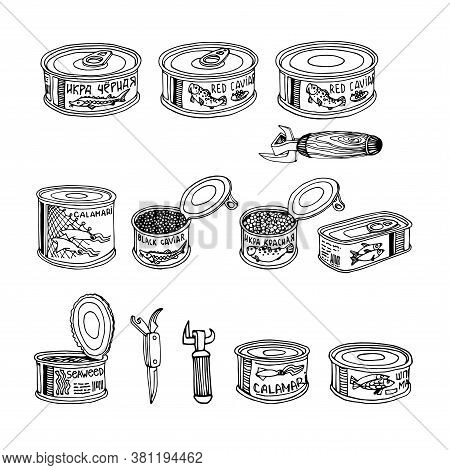 Set Of Fish Caviar, Canned Squid & Seaweed, Delicious Seafood, Logo Or Emblem, Vector Illustration W