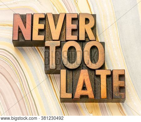 never too late word abstract in vintage letterpress wood type printing blocks against marbled paper, business, education  and personal development concept