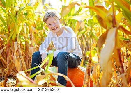 Smiling Poisitve Boy Sitting On A Pumpkin In Corn Maze At Pumpkin Patch, Fall Season Concept