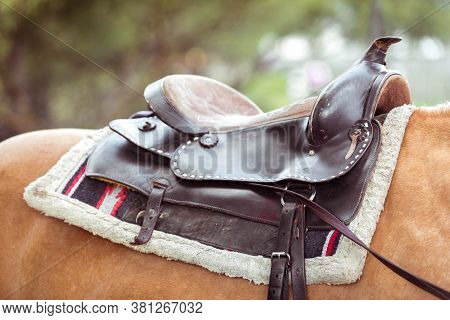 The Saddle Is On The Back Of A Red Horse.