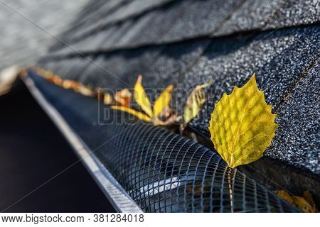 Plastic guard over gutter on a roof with leaves stuck on the outside of the mesh
