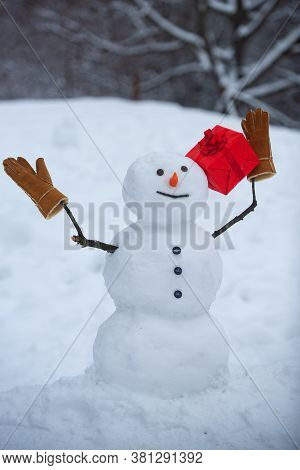 Snowman The Friend Is Standing In Winter Hat And Scarf With Red Nose. Snowman In A Scarf And Hat. Sn