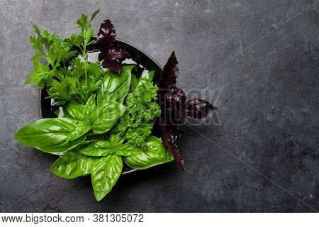 Various garden herbs in bowl on stone table. Top view flat lay with copy space