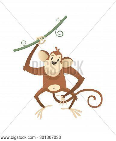 Jungle Wild Monkey. Colorful Beautiful Safari, Circus Or Zoo Cartoon Animal Ape With Lianna, Wildlif