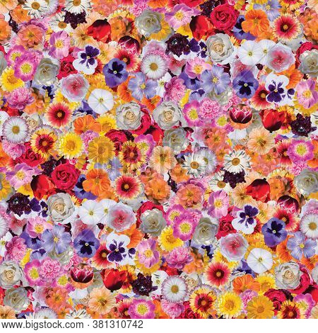 Flower Print Collage, Seamless Multi-colored Flower Pattern. Delicate Flowers Of Different Sizes And