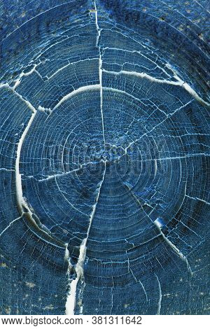 Dark Blue Abstract Vertical Background Or Wallpaper. Inverted Picture. Cracked Bough On An Old Dried