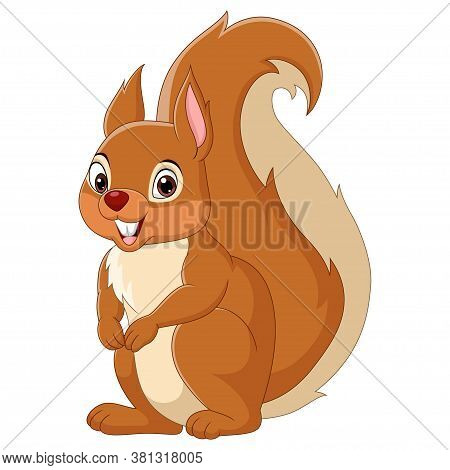 Vector Illustration Of Cartoon Happy Squirrel Isolated On White Background