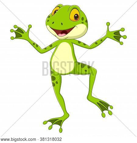 Vector Illustration Of Cartoon Funny Frog Posing On White Background