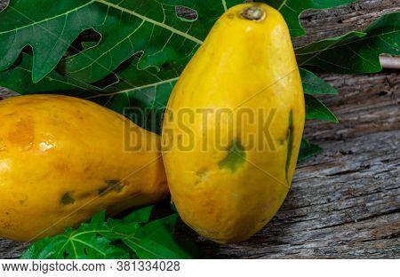 Papaya Papaya Fruits Among Green Leaves On Aged Wooden Surface