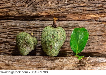 Fruits And Leaves Of Atemoia (annona Squamosa L. X Annona Cherimola Mill.) From The Family Of Anonác