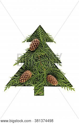 Green Chrristmas Tree Made Of Coniferous Tree With Fir Cones On White Background. Minimal Compositio