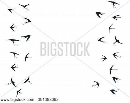 Flying Swallow Birds Silhouettes Vector Illustration. Migratory Martlets Flock Isolated On White. Wi