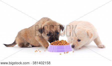 Two Puppies Eating From A Bowl Isolated On White.