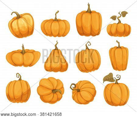 Cartoon Pumpkin Flat Icons Set. Orange And Yellow Autumn Pumpkins. Different Shapes And Sizes Of Pum