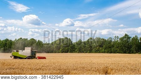 Combine Harvester Harvests Ripe Wheat In Field, Against Of Trees And Beauty Blue Sky With Clouds. Pr
