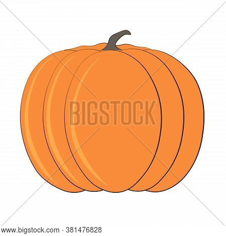Pumpkin Vector Illustration Single Pumpkin On White Background. Orange Cartoon Pumpkin Vector Illust
