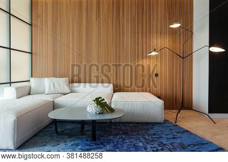 Modern Living Room In House With Contemporary Interior Design, Comfortable Sofa, Carpet On Floor, La