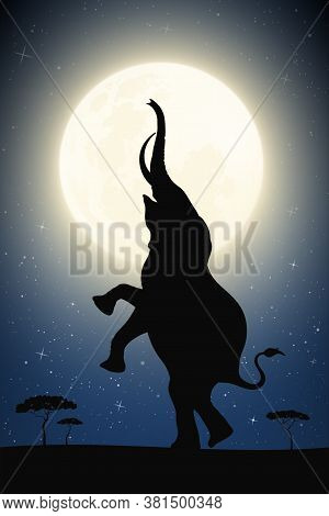 Standing Elephant In Savannah On Moonlight Night. Desert Landscape With Big Animal And Full Moon In