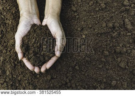 Hand Of Male Holding Soil In The Hands For Planting With Copy Space For Insert Text.