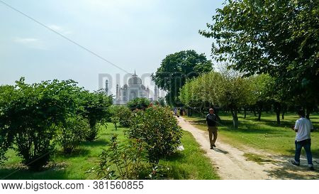 The Taj Mahal Seven Wonders Of The World. A Different View Of Taj Maha From Far Distant With Lush Gr