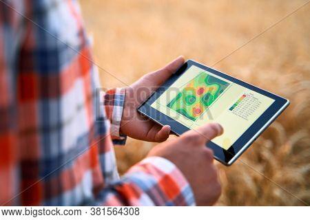 Precision Farming. Farmer Hands Hold Tablet Using Online Data Management Software, Differential Fert