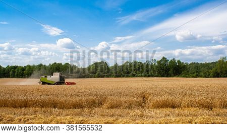 Combine Harvester Harvests Ripe Wheat In Field, Against Of Trees And Blue Sky With Clouds. Procureme