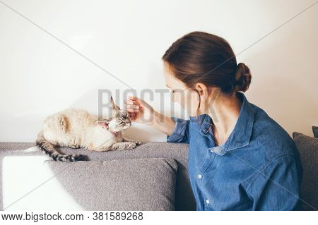 Portrait Of A Woman In Blue Jeans Shirt Is Cuddling Devon Rex Cat. Cat Is Feeling Happy And Relaxed