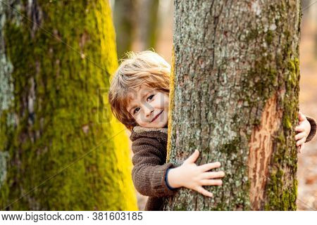 Cute Little Kid Boy Enjoying Climbing On Tree On Autumn Day. Cute Child In Autumnal Clothes Learning