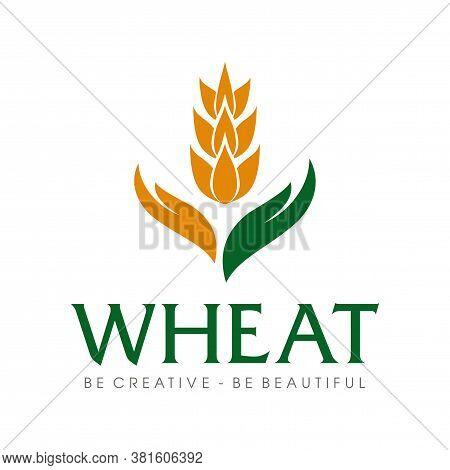 Wheat Grain And Wheat Rice Logo Inspiration Vector