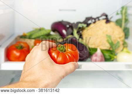 Man Takes The Tomato From The Open Refrigerator. Refrigerator Is Full Of Vegetables And Herbs. Healt