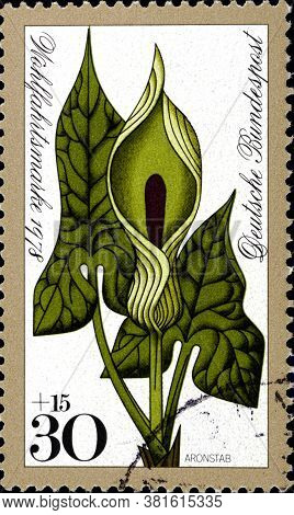 02 10 2020 Divnoe Stavropol Territory Russia The Germany Postage Stamp 1978 Forest Flowers Arum Macu