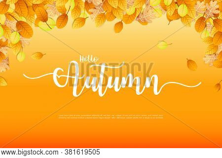Autumn Backgorund With Dry Leaf Falling On Background,  For Autumn Design Element, Vector Illustrati