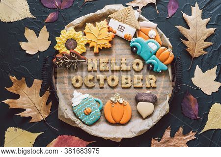 Hello October. Multicolored Autumn Cookies On A Black Background. Autumn Concept