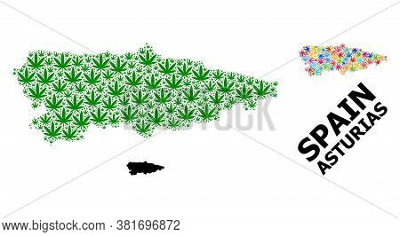 Vector Weed Mosaic And Solid Map Of Asturias Province. Map Of Asturias Province Vector Mosaic For We